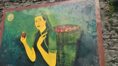 Photo of EXCLUSIVE : रिज की दीवारों पर बनी पेंटिंग से रंग हो रहे गायब